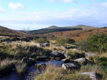 Parc du Dartmoor